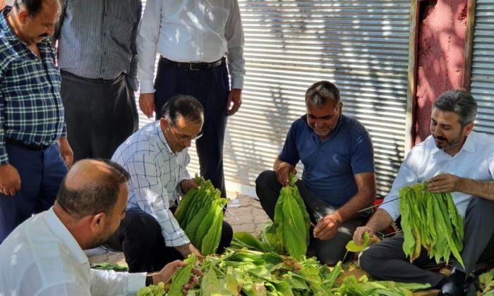 AK Parti heyeti Kahta'nın merkez ve köylerini gezdi