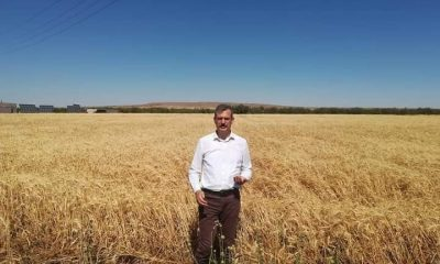 Çiftçilere kuraklık desteği